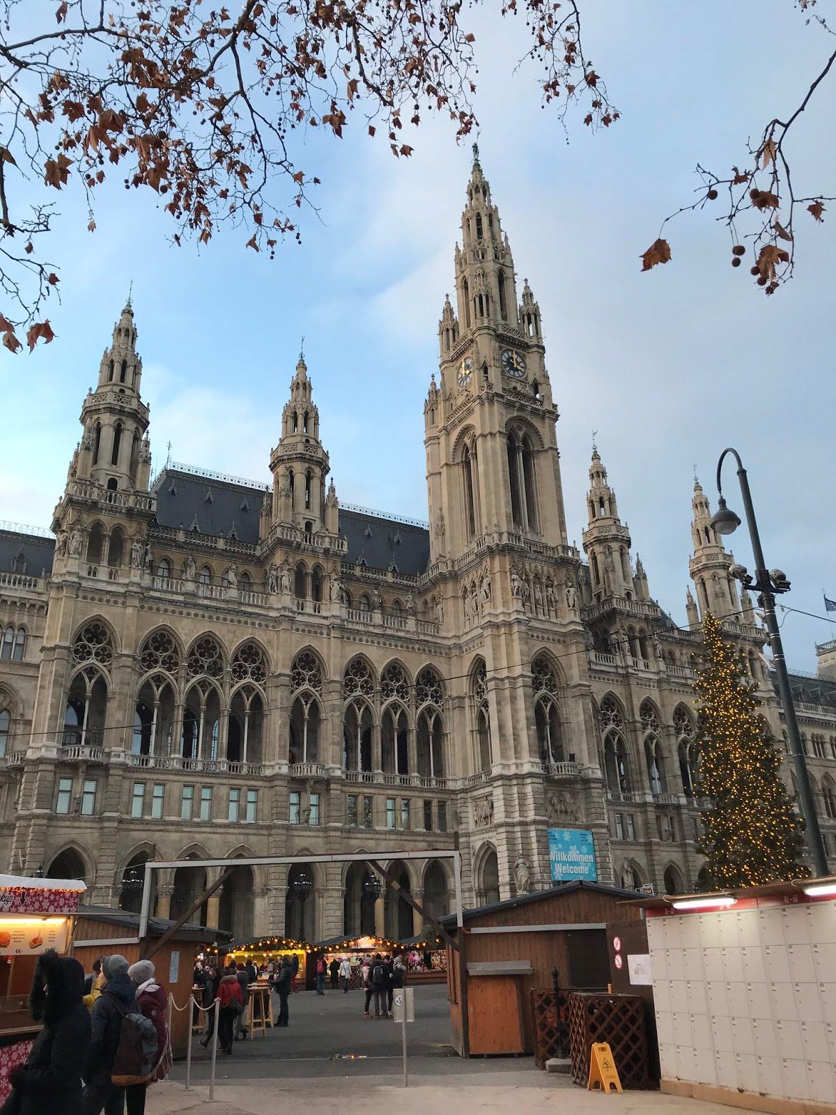 vienna city hall, wien rathaus