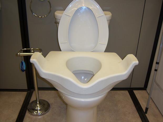 Handicap Toilet Seats Lowe's