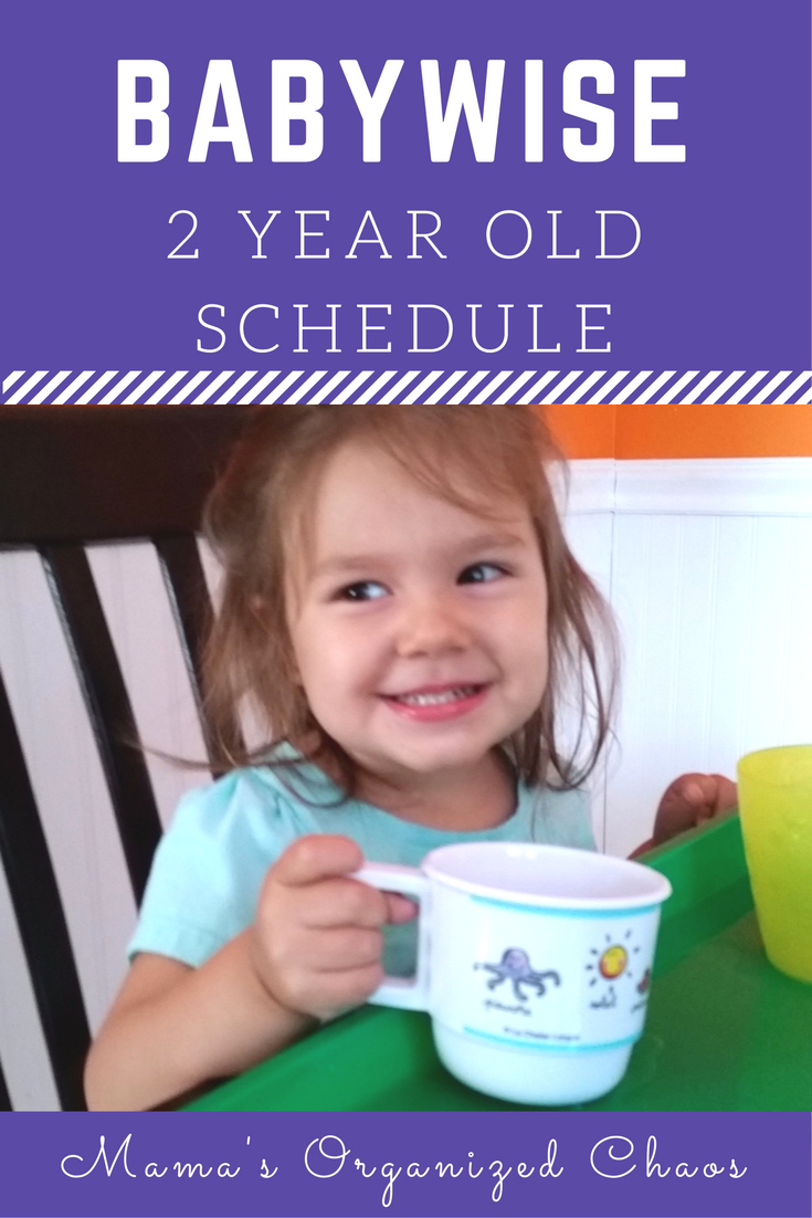 2 year schedule & update - mama's organized chaos