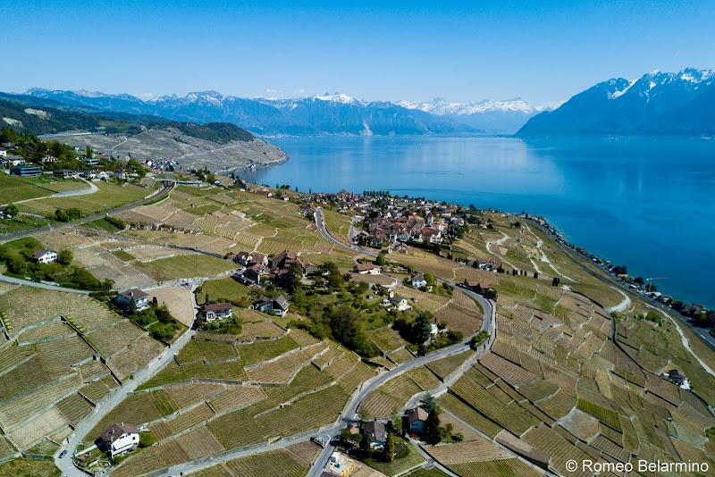 Terraced Vineyards Lake Geneva Day Trips
