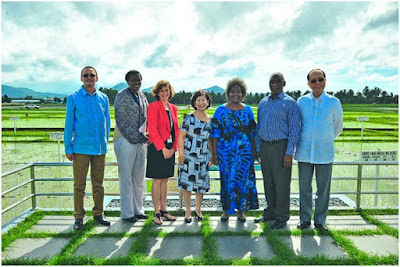 Namibia eyes building ties with IRRI to boost its rice production