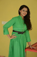 Geethanjali in Green Dress at Mixture Potlam Movie Pressmeet March 2017 034.JPG