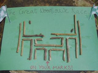 Wood louse maze
