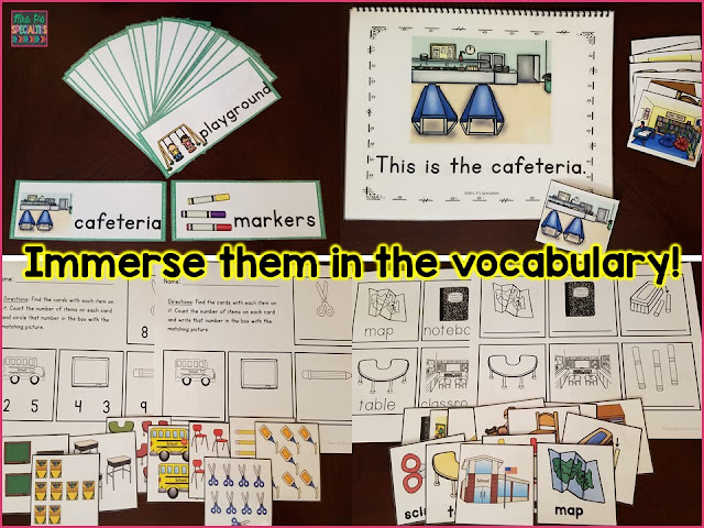 Immerse students in the vocabulary, expose students to the vocab, pictures and concepts over and over and over.