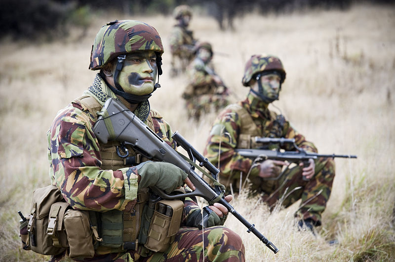 NZ Attack Wallpaper: World Military And Police Forces: New Zealand