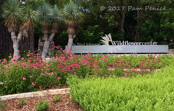 Friday May 4 Wildflower Center And Garden Tours In Southwest Austin