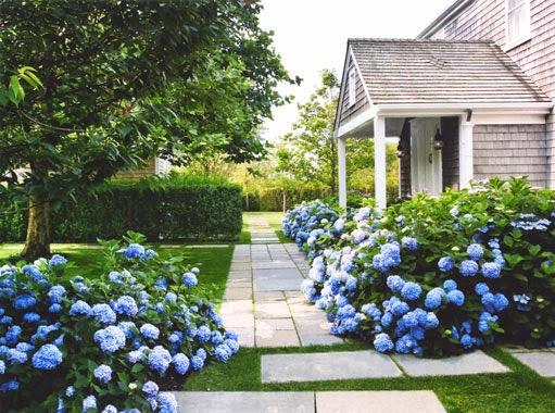 jenny steffens hobick landscaping