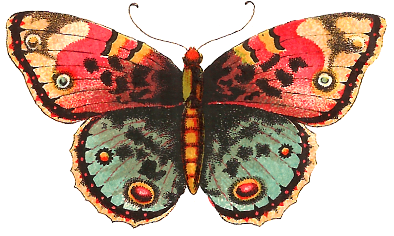 Antique Images: Free Digital Butterfly Label Crafting Clip ...