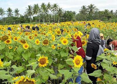 Lokasi Taman Dewari Magelang