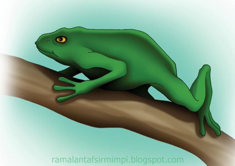 Pada umumnya hewan ini atau hewan amfibi katak 9 Arti Mimpi Makan Katak Hidup Menurut Primbon Jawa