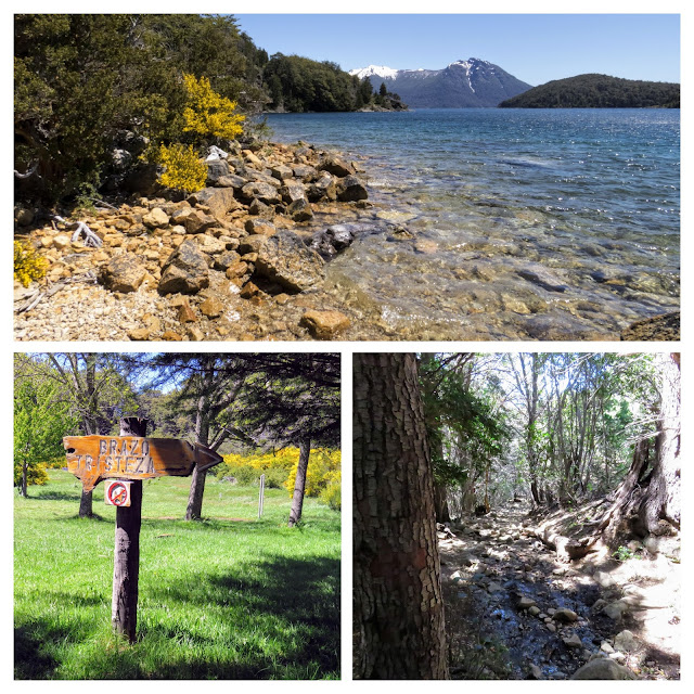 What to do in Bariloche: Collage of pictures of the hike to Mirador Braza Tristeza along the Circuito Chico near Bariloche Argentina