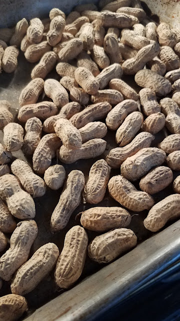 recipe, peanuts, roasted peanuts, what to do with raw peanuts