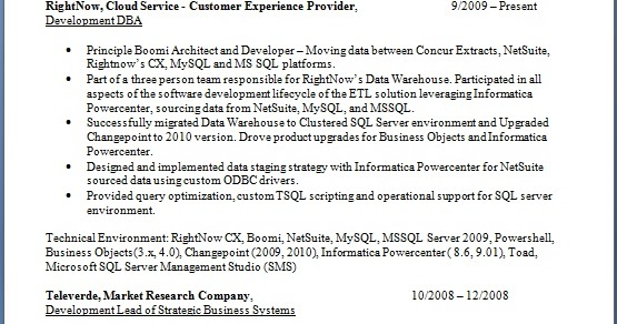 customer experience provider resume format in word free