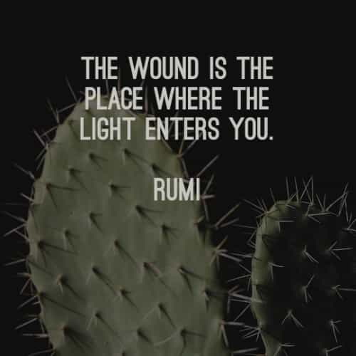 Famous quotes and sayings by Rumi