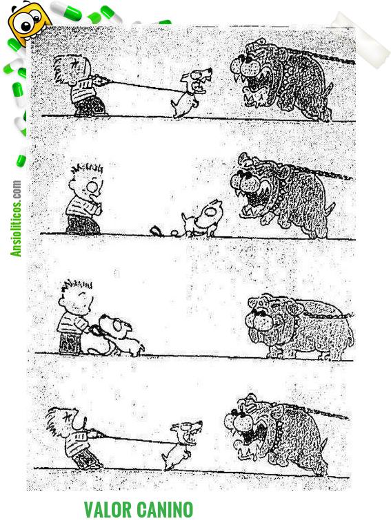 Chiste de Valor Canino