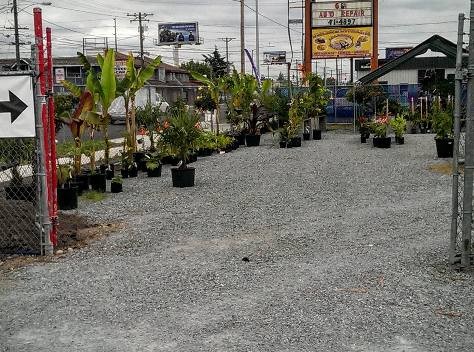Turns Out, The Fenced Lot Goes With Green Thumb Garden Supply Which  Recently Moved Here From A Different Part Of Town. Iu0027d Shopped At The  Former Location, ...