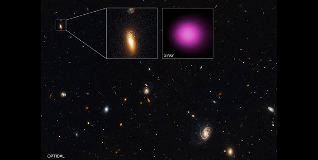 The main panel of this graphic has a wide-field, optical light image from the Hubble Space Telescope. The black hole and its host galaxy are located within the box in the upper left. The inset on the left contains Hubble's close-up view of GJ1417+52. Within this inset the circle shows a point-like source on the northern outskirts of the galaxy that may be associated with XJ1417+52.  The inset on the right is Chandra's X-ray image of XJ1417+52 in purple, covering the same region as the Hubble close-up. This is a point source, with no evidence seen for extended X-ray emission. Credit: X-ray: NASA/CXC/UNH/D.Lin et al; Optical: NASA/STScI