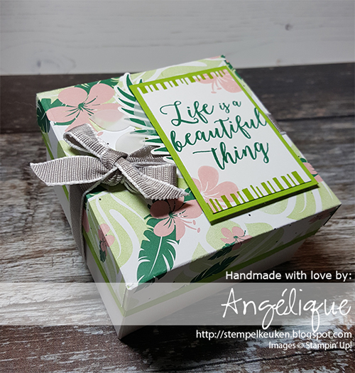 de Stempelkeuken Stampin'Up! producten koopt u bij de Stempelkeuken #stempelkeuken #stampinup #stampinupnl #tropical #tropicalchic #tropicalescape #miami #ribbon #dsp #box #giftbox #cadeau #handmade #handgemaakt #basteln #crafting #knutselen #kaartenmaken #cadeau #foryou #speciaalvoorjou #beautiful #samsung #lemonlimetwist #punch #vellum #denhaag #thehaguecity #heesterbuurt #rotterdam #westland #delft #leiden