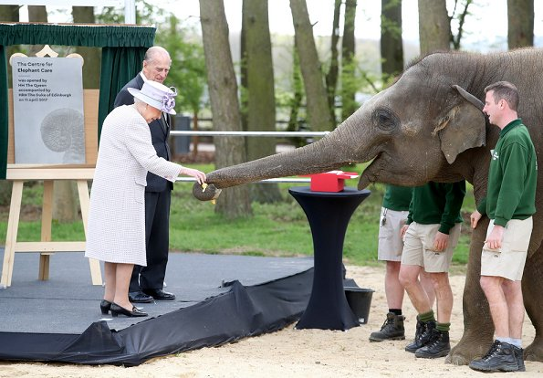 Queen Elizabeth and Prince Philip met the Head Elephant Keeper and view the elephant team carrying out daily care tasks such as nail filing and mouth care