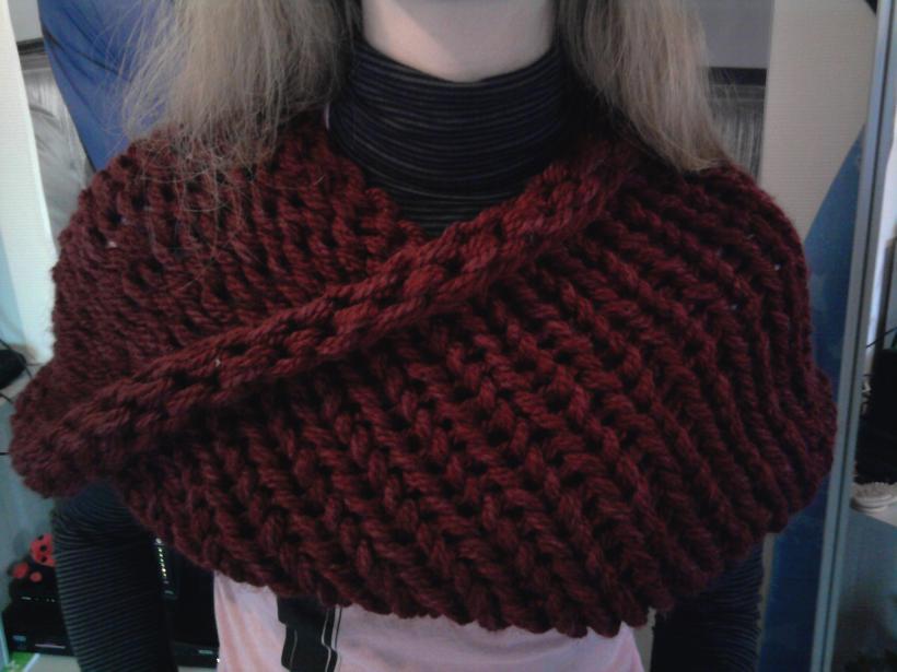 Je me suis donc rendue chez Bergère de France pour y acheter la laine (et  aussi la laine d un autre modèle que je commencerai demain). 1c802656c74