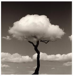 Metáfora y creación (poética). Francisco Acuyo
