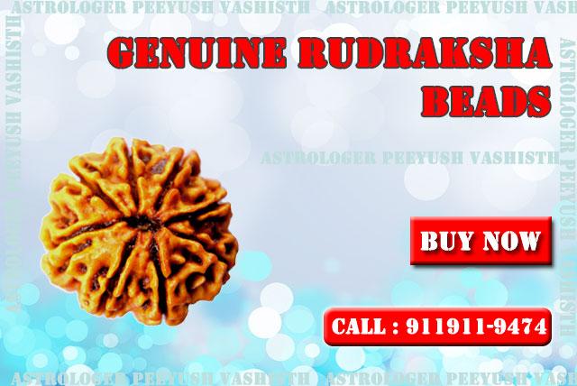 Rudraksha Beads Online