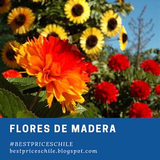 Flores de Madera Pucon