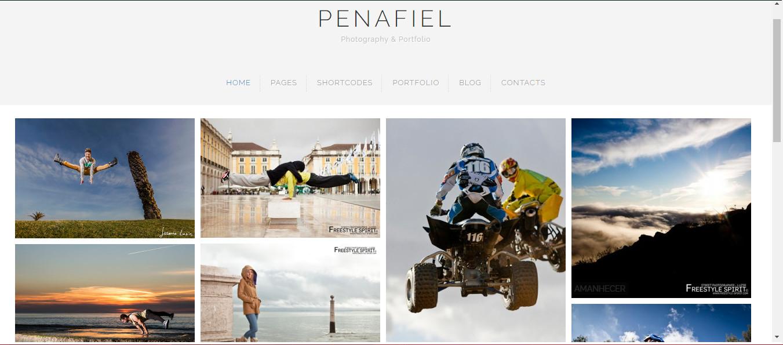 Penafiel - Grid and Portfolio themes for wordpress