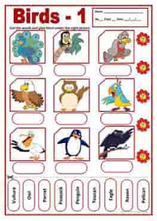 birds-1-activities-wordsearch-ESL-EFL-downloadable-printable-worksheets-practice-exercises-and-activities-to-teach-about-birds-picture-dictionaries