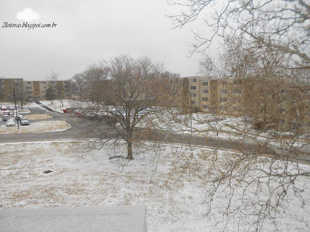 Vista da nevasca