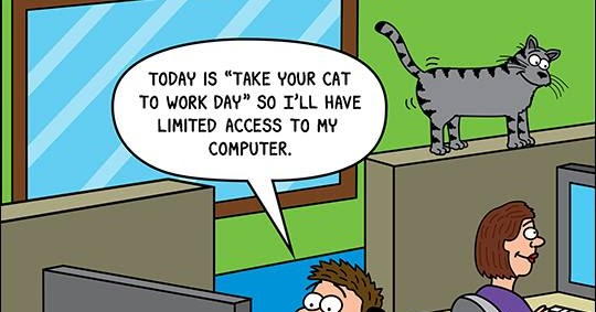 Mystery Fanfare Cartoon Of The Day Take Your Cat To Work Day
