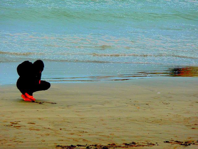 Paisajes de playa