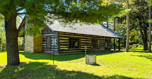 log cabin beneath pine trees