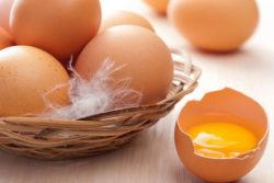 O agar-agar ou a gelatina: substituto  para ovos, sabia dessa?