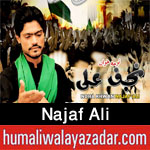 http://www.humaliwalayazadar.com/2017/08/najaf-ali-nohay-2018.html