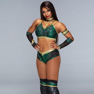 Renee Michelle Wiki Biography, Age, Birthday, Wedding, Husband, Height, WWE, Net Worth, Parents