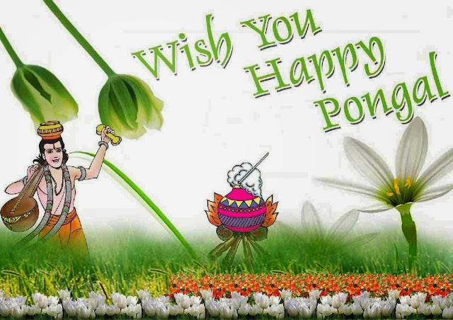 Happy Pongal Cover Pictures for Facebook