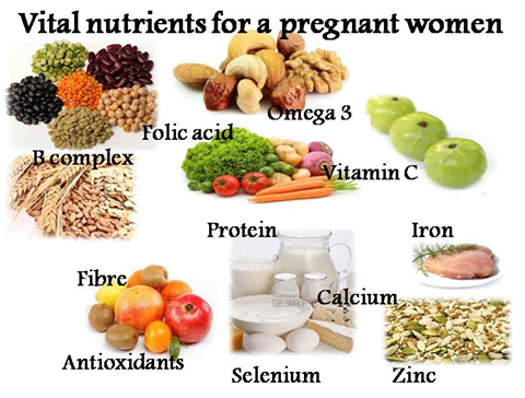 Dha Rich Food List For Pregnancy