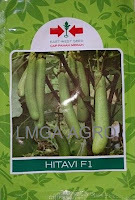 benih terong hitavi f1,terong hitavi f1,terong hijau,lmga agro,cap panah merah