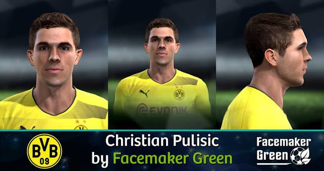 Christian Pulisic Face PES 2013
