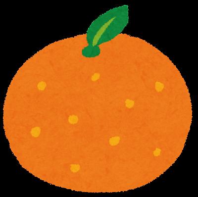みかん・オレンジのイラスト(フルーツ)