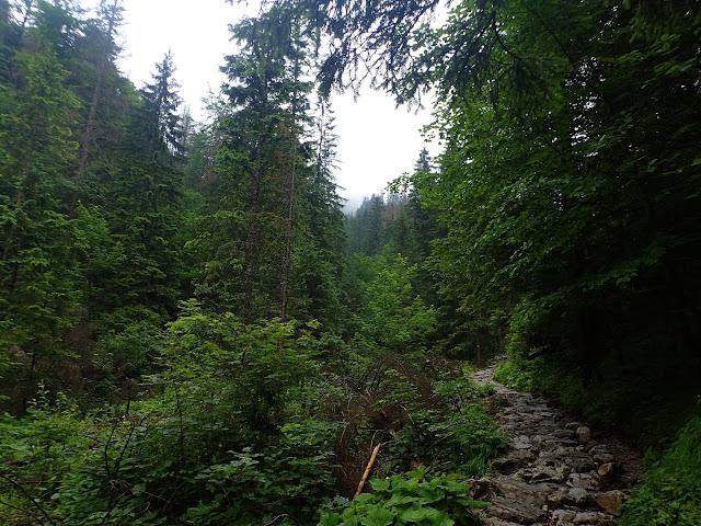 Szlak Polana Strążyska - Wodospad Siklawica