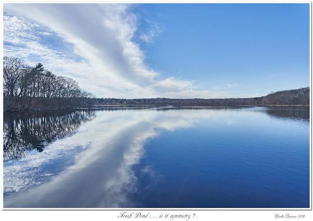 Fresh Pond: ... is it symmetry?..