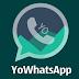 YoWhatsApp 7.81 APK 2018 - WhatsApp modificado