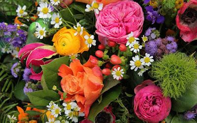 https://4.bp.blogspot.com/-PZDkkztYOjU/WubQKBN73II/AAAAAAAA6UI/C-3Em0-WJxsP2Uu0wC1wl3Ww_FQhmEMdwCLcBGAs/s600/flowers.jpg