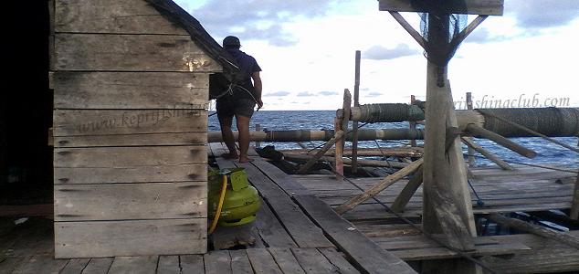 Hallo sobat pemancing sekalian jumpa kembali dengan kami Mancing Di Kelong Desa Pengudang