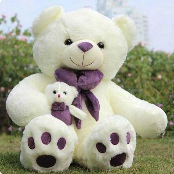 Big Teddy Bear Image for Whatsapp DP
