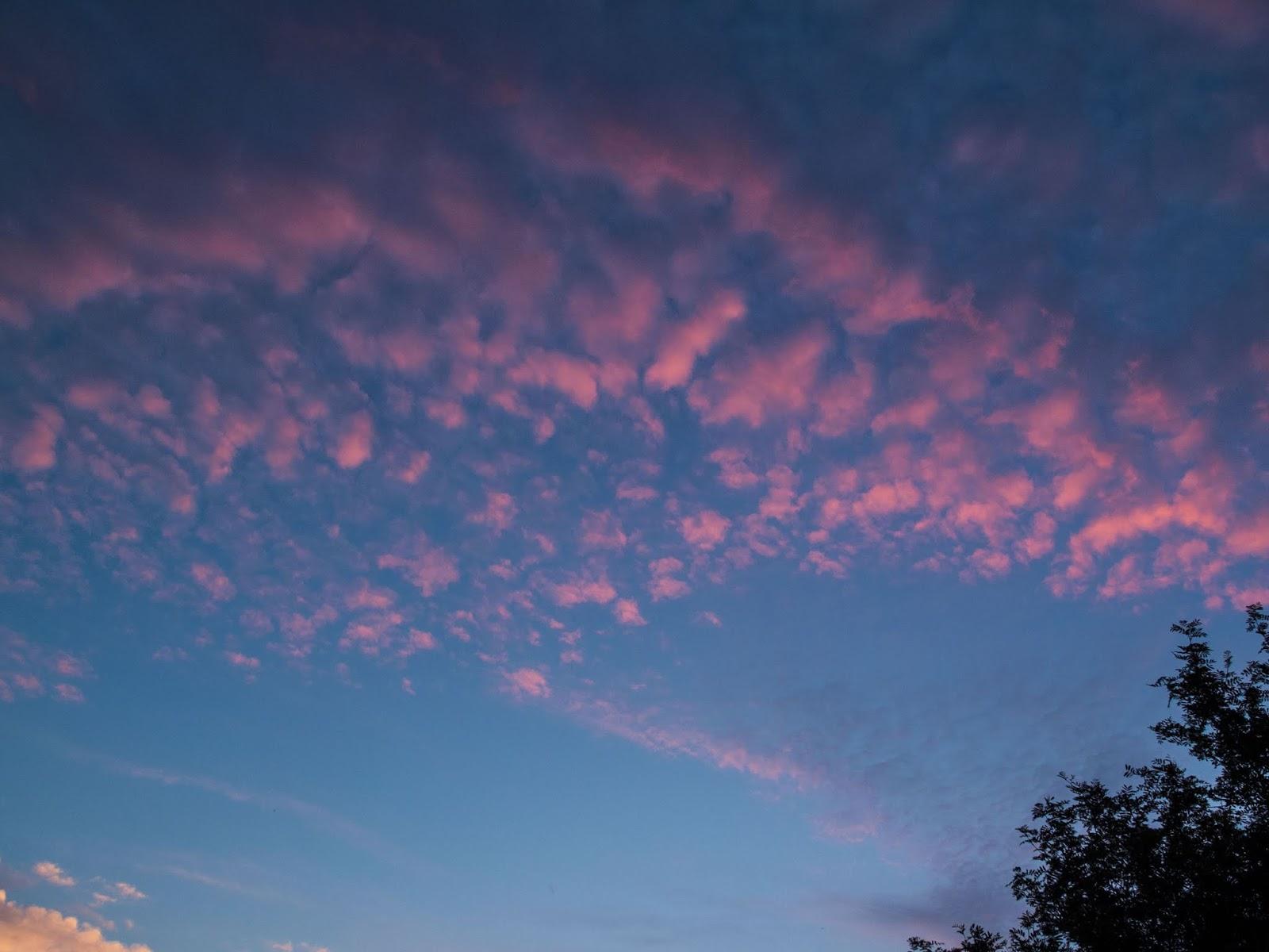 A curve of red Altocumulus clouds on a blue sky.