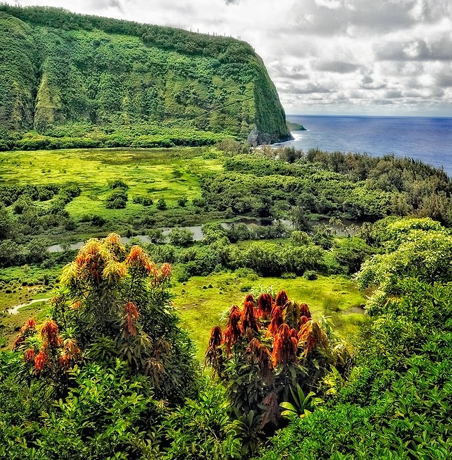 Sizzling Tourist Hotspots in Hawaii | Waipio Valley on the Hamakua Coast of the Big Island, Hawaii