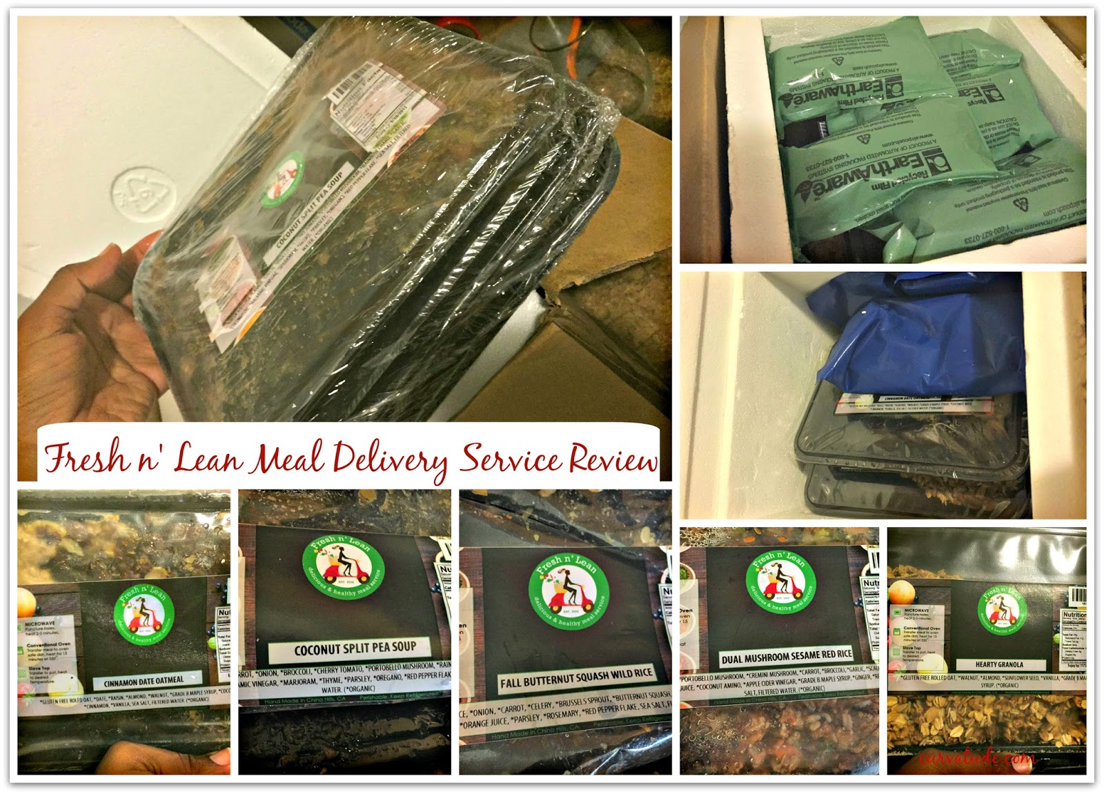 Lifestyle} Fresh n' Lean Meal Delivery Service Review + Giveaway